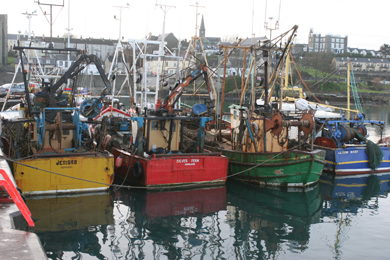 Jim Shannon MP has challenged the Fisheries MInister over her committment to the industry.