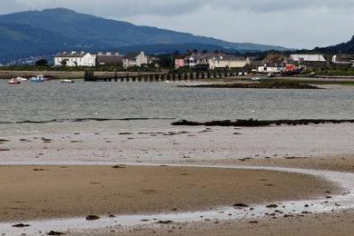 Residents in Greencastle, County Down, are concerned about the sustainability of a proposed ferry service between Co Louth and Co Down.
