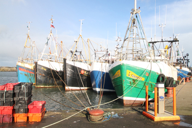 The fishing fleet in Co Down is stunned at the quota cuts from Brussels.