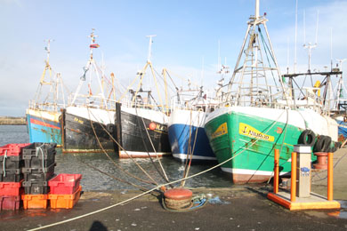 The prawn trawlers in Ardglass keep one eye on the weather and one eye on Brussels.