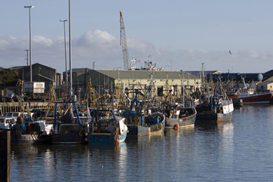 Trawlers tied up in Kilkeel waiting for better times.