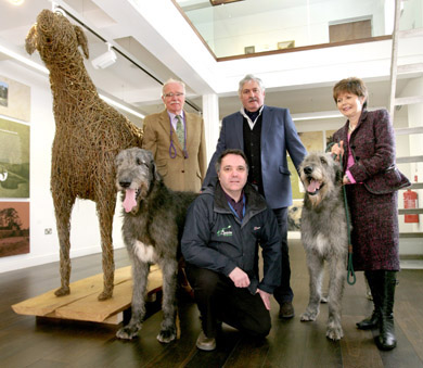 Pictured at the unveiling or the portrait and the announcement of some of the canine attractions destined for Shane's Castle over the weekend of 29-30 June are, from left, Tim Finney with his stunning, champion wolfhound, 'Gulliagh Aramis' which was the model for The Massereene Hound; Albert Titterington of The Great Game Fairs of Ireland; Marian Finney with 'Hal' and, in front, Gary Shaw, Cultural Services Manager at Antrim Borough Council.  With another Down connection the group is pictured alongside a giant sized model of The Massereene Hound, created by Wellig Crafts  of Portaferry for the Clotworthy House Gallery.