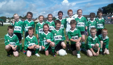 The Aughlisnafin Year 4 squad.