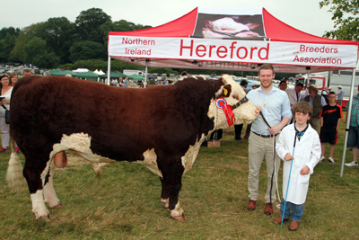 Gareth Sharvin, Down District Council Vice Chairman,  pictured with Bradley Graham from Portadown with the winner of the senior Hereford bull class.