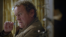Famous Irish actor Colm Meaney.