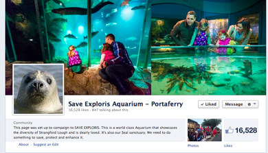 The Facebook page of the Friends of Portaferry Aquarium says it all - over 6500 likes.