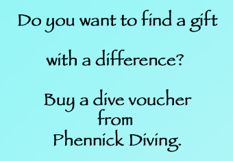 phennick diving voucher