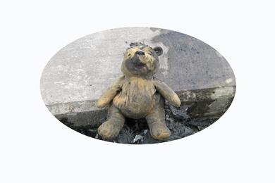No hiding place, A POOH Bear found stuffed down a toilet drain by the Dirty Dozen team.