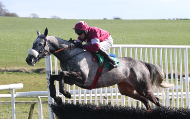 Un Beau Matin ridden by Paul Carberry  jumps in the first race in Downpatrick to win the race.