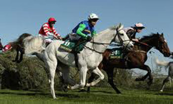 The Grand National is on this Saturday - Down News with Irish racing Preview helps you select a winner.