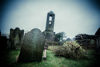 Woodland burials may soon provide an alternative to traditional burials as plans move ahead for a new site in County Down.