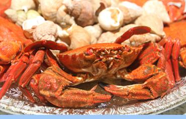 A selection of tasty seafood at Kilkeel Seafoods.