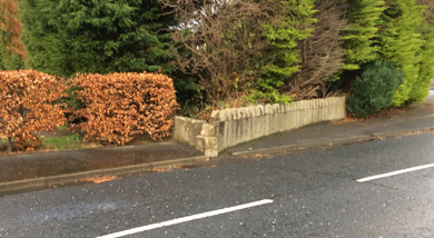 Councillor Patrick Clarke is concerned about a wall intruding onto the Bryansford road in Newcastle.