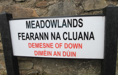 Police and other agencies conducted a planned raid on properties on the Meadowlands estate and neighbouring areas in Downpatrick.