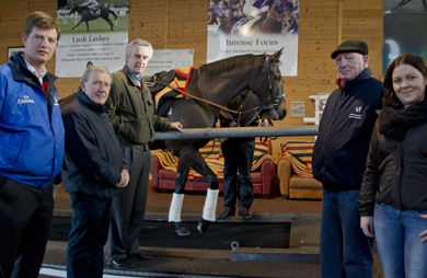 L to R: Launching the 2016 Irish Godolphin Stud and Stable Staff Awards Gerry Duffy, Godolphin Ireland, Bernard Caldwell Chairman of Irish Stablestaff Association, Trainer Jim Bolger, Paddy Doyle, Irish Stablestaff Association and Miriam Doran, Racing Post exercising Pleascach, dual Group 1 winning filly (Tattersalls Irish 1000 Guineas and Darley Yorkshire Oaks) on the treadmill.