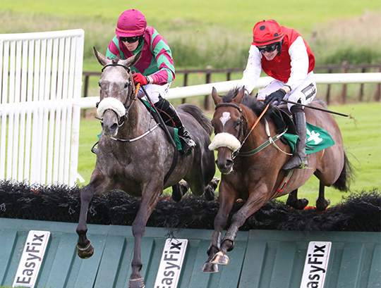 LuckyMc jumps over the last hurdle with Genesta (right) who rode on to win the race.