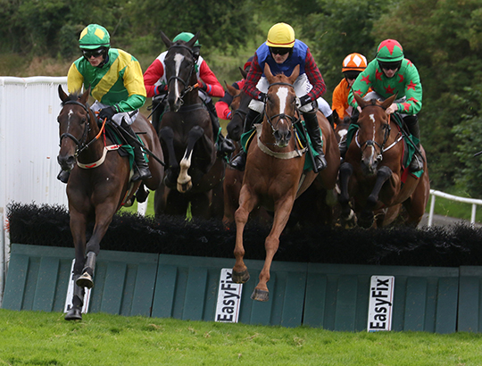 Indian Reel (left) much fancied, clears the last hurdle with Thepremierbroker in the Joe Rea Memorial Maiden Hurdle.