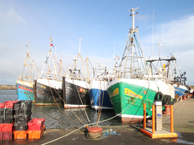 The Ardglass fishing fleet has struggled to make a living since last September 2012.