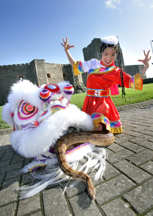 Wei Hong from Downpatrick with her slithering snake, a Boa Constrictor, practising her dance routine in Carrickfergus.