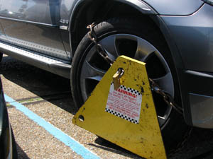 South Down MP Margaret Ritchie has spoken against wheel clamping companies in a Westminster debate.