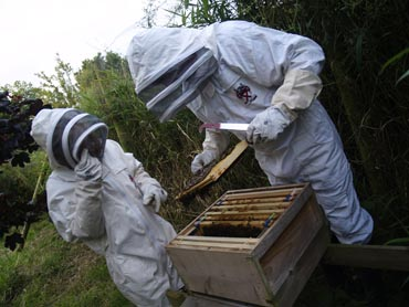 If you are intereste din beekeepong, come along to the Killinchy and District Beekeepers AGM