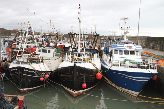 Prawn trawlers in Ardglass harbour shelter from the rough seas.