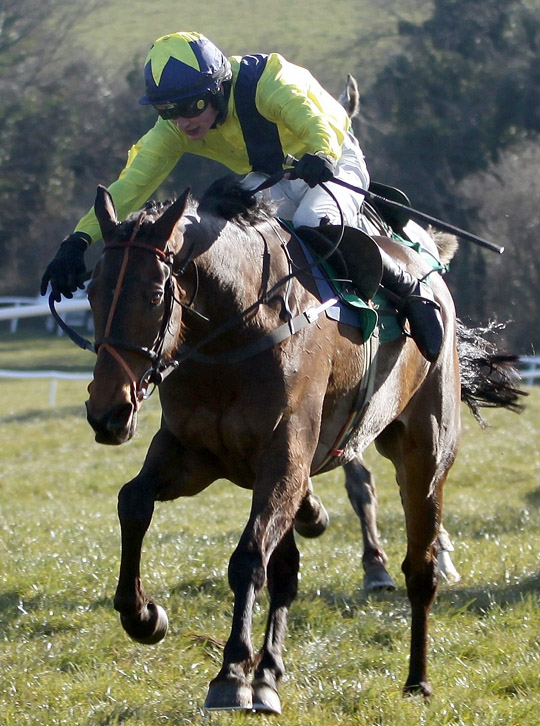 Pineau De Re in action in 2013 at the Toals Ulster Grand National in Downpatrick. (Photo by Irishracinpx)