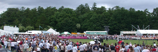 Crowds line the arena at the Shanes Castle Country and Game Fair.