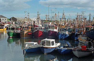 Shellfish fishermen in the North have been squeezed out of fishing in the ROI waters within the six mile limit.