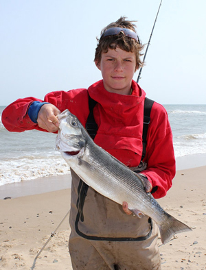 A junior winner in the European Sea Angling Federation unhooks a nice sea bass in Wexford.